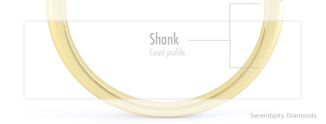engagement rings anatomy - the shank