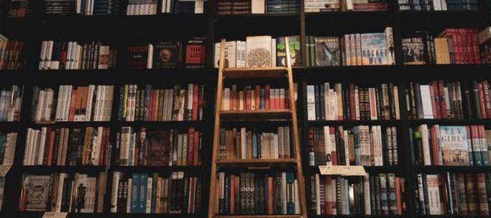 What-Im-reading.-Bookshelf-and-ladder-photo-by-Taylor-on-Unsplash.jpg